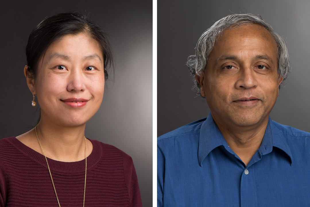 NSF award helps professors develop a data science course for non-computing majors